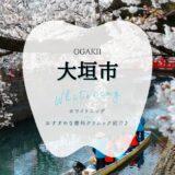 大垣でホワイトニング